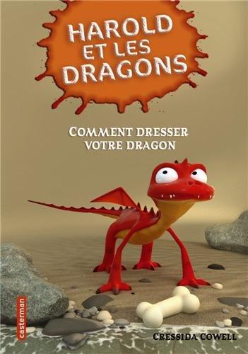 Comment dresser votre dragon