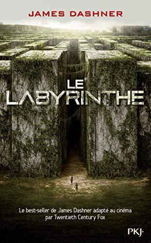 1. l'épreuve : le labyrinthe