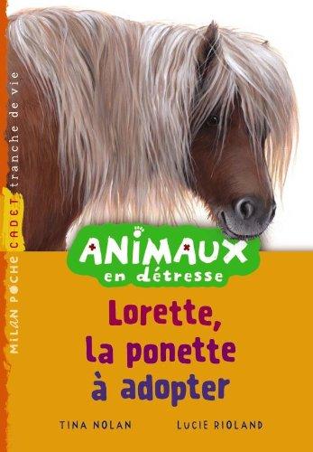 animaux en détresse : lorette, le poney à adopter